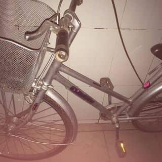 Xe đạp cũ của phieu tại Hồ Chí Minh - 3422251