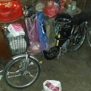 Xe đạp điện asama của mrduy1 tại Tiền Giang - 3280328