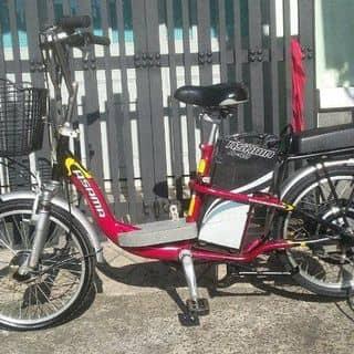 Xe đạp điện asama A48  của kiena2001 tại Hồ Chí Minh - 2977750