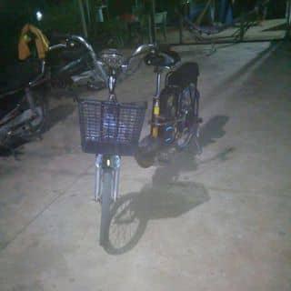 Xe dien  của datpi tại 226 Dư Khánh,  Xã Thạnh Phước, Huyện Tân Uyên, Bình Dương - 3635362