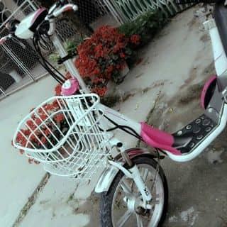 Xe điện hkru của trautinny tại Thái Bình - 3100261