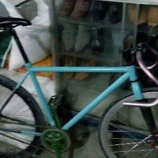 Xe fixed gear của vytrieu49 tại 445 Hoàng Hữu Nam,  P. Long Bình, Quận 9, Hồ Chí Minh - 3764969