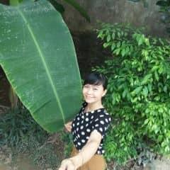 Thanh Vân Cao Thị trên LOZI.vn