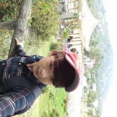 Tim Nam trên LOZI.vn